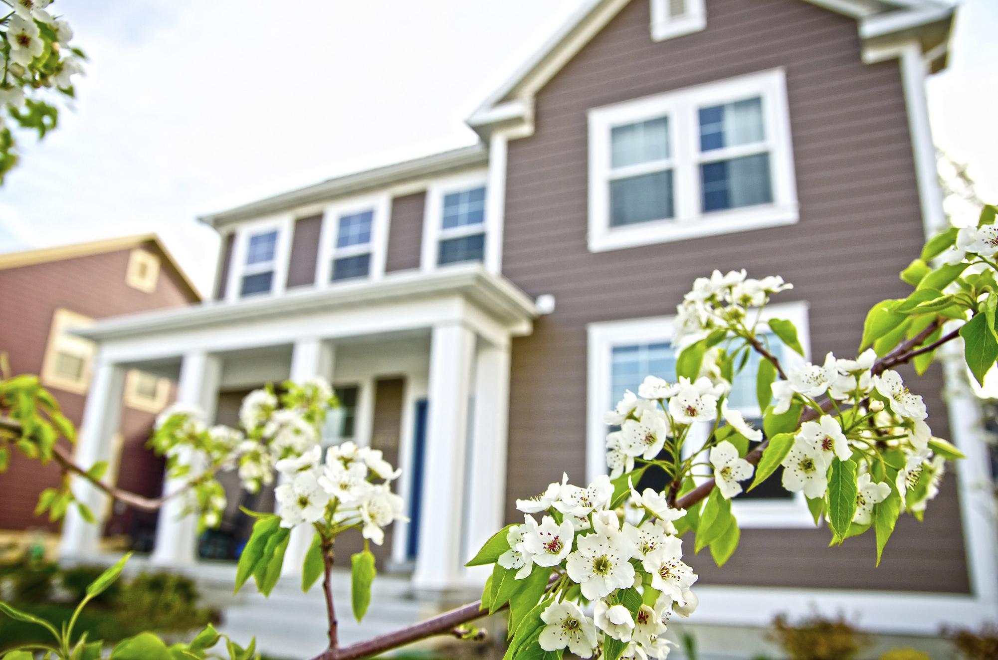 Spring Home Remodeling